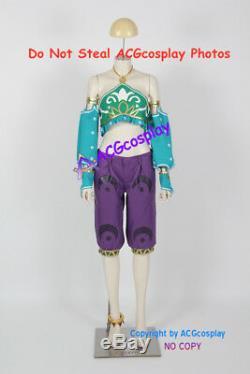 Legend of Zelda Breath of the Wild Link Cosplay Costume Gerudo costume